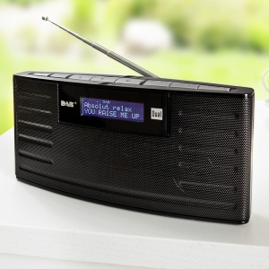 dual dab15 portables dab ukw radio norma angebot. Black Bedroom Furniture Sets. Home Design Ideas