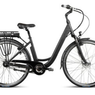 Vaun Elisa Alu-City E-Bike 28er: Real Deal des Tages