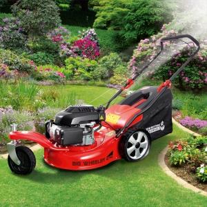 PowerTec Garden Big Wheeler 460 Trike Benzin-Rasenmäher bei Norma erhältlich