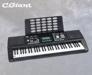 c-giant-keyboard-hofer