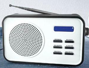 Terris Portables DAB Radio