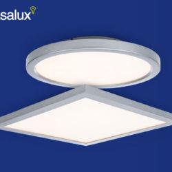 Casalux LED-Wand- und Deckenleuchte: Hofer Angebot ab 21.1.2019 - KW 4