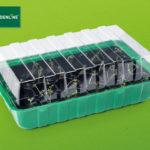 Gardenline Anzuchtkasten-Set im Angebot bei Hofer [KW 5 ab 1.2.2018]