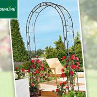 Gardenline Rosenbogen: Aldi Süd Angebot