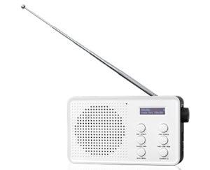 Medion Tragbares DAB-UKW-Radio