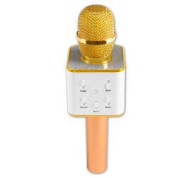 MusicMan BT-X31 2-in-1 Karaoke-Mikrofon