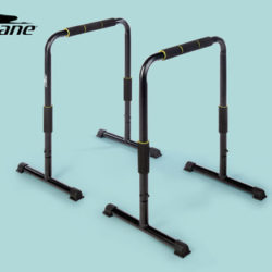 Crane Langhantel-Set, Curlstangen-Set, Kurzhantel-Set und Push up Bars: Hofer Angebot ab 4.2.2019
