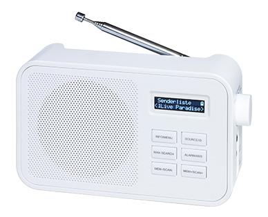 Terris Audio Tragbares DAB+ Radio
