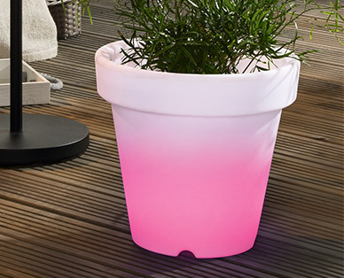 Gardenline Led Solar Blumentopf Im Aldi Süd Angebot Ab 652019