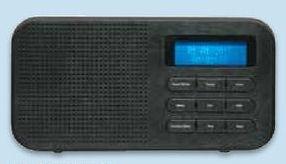 Dual DAB-42 Radio