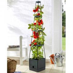 PowerTec Garden Tomaten-Pflanzturm