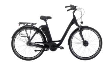 Prophete Geniesser EFC 300 Elektro-Fahrrad