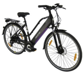 Maxtron MT12 Elektro-Trekkingrad